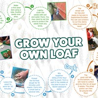 Schools get opportunity to grow their own loaf